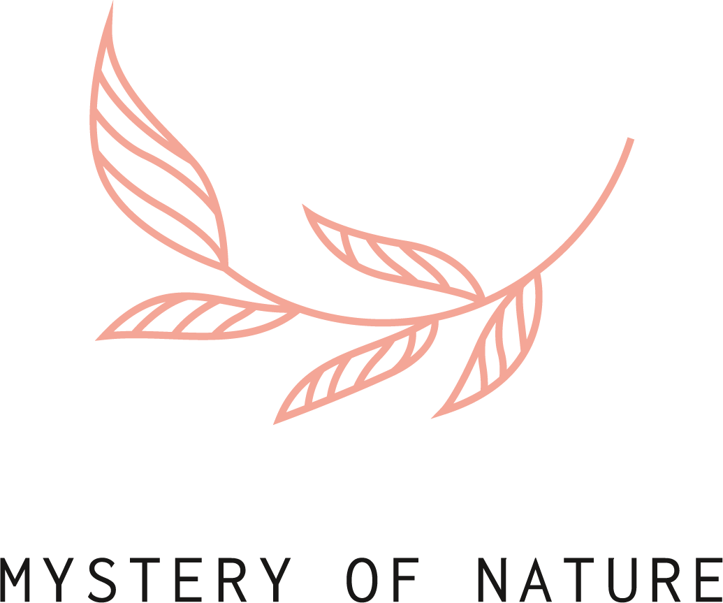 Mystery of Nature